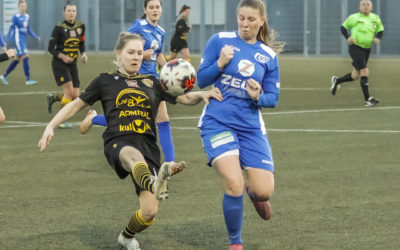 Damen Bundesliga liveCarinthian Hornets gegen Wiener Sport Club