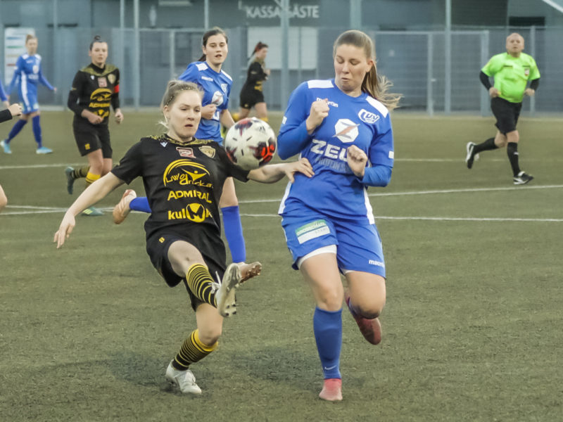 Carinthians LIWOdruck Hornets gegen Wiener Sport Club Photo: Ernst Krawagner