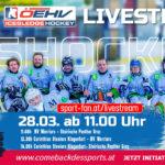 Para Hockey live   Turnier aus Gmunden mit Steelers, Panther und Warriors