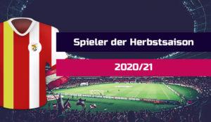 Voting-Spieler-der-Saison-Sport-Fan